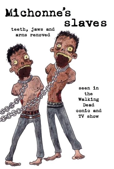 michonne's slaves