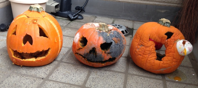 rotting pumpkins